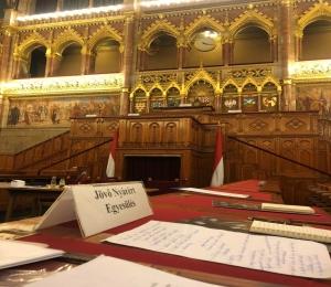 Demokratie-Spiel im Parlament